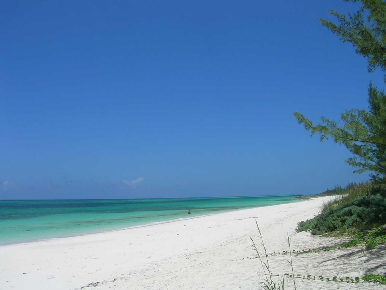 Tay bay beach in Eleuthera