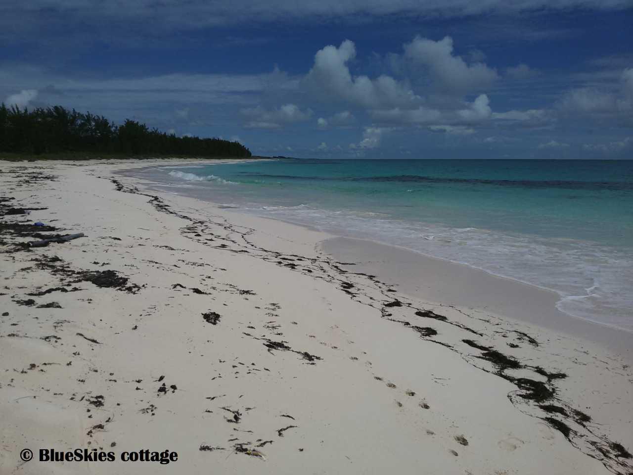 airport beach Eleuthera