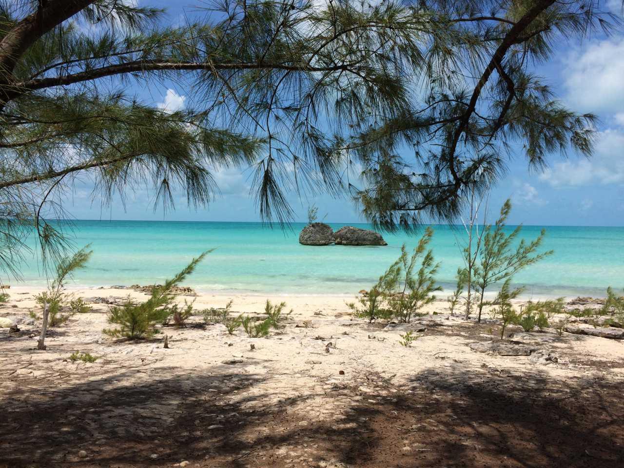 North Eleuthera beach: twin sisters