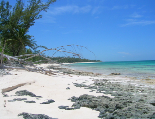 Quick video tour of Eleuthera beaches