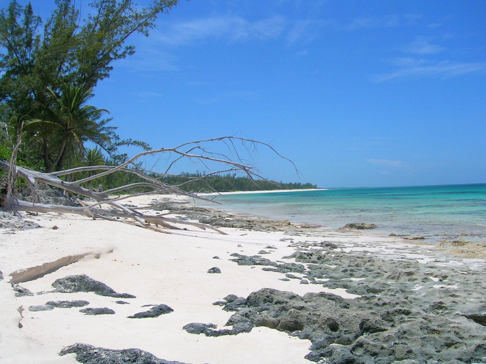 Poponi beach Eleuthera