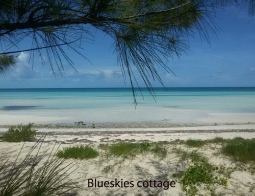 Central Eleuthera beaches