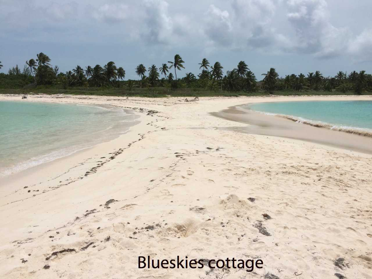 twin cove beach Eleuthera
